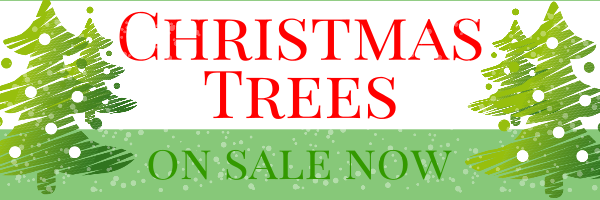 Personalised+%22Christmas+Trees+On+Sale+Here%22+Banner - design template - 78